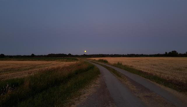 Mondaufgang in Aurich Ferienwohung Apartment UTKIEK Aurich Ostfriesland