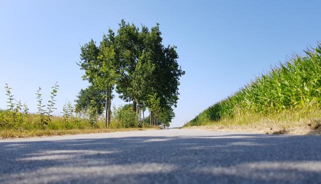 Fahrradweg Ferienwohung Apartment UTKIEK Aurich Ostfriesland
